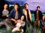 Everwood N°10365 wallpaper provenant de Everwood