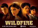 Wildfire N°10380 wallpaper provenant de Wildfire