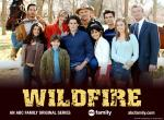 Wildfire N°10381 wallpaper provenant de Wildfire
