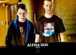 Alpha Dog N°11908 wallpaper provenant de Alpha Dog