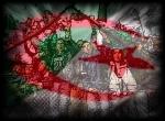 Algérie wallpaper provenant de Algérie