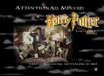 Harry Potter N°568 wallpaper provenant de Harry Potter