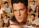 Wentworth Miller N°7283 wallpaper provenant de Wentworth Miller
