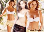 Erica Durance N°8315 wallpaper provenant de Erica Durance