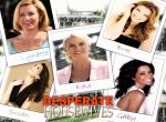 Desperate Housewife N°9180 wallpaper provenant de Desperate Housewife
