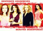Desperate Housewife N°9452 wallpaper provenant de Desperate Housewife
