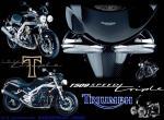 Triumph wallpaper de tusow provenant de Triumph